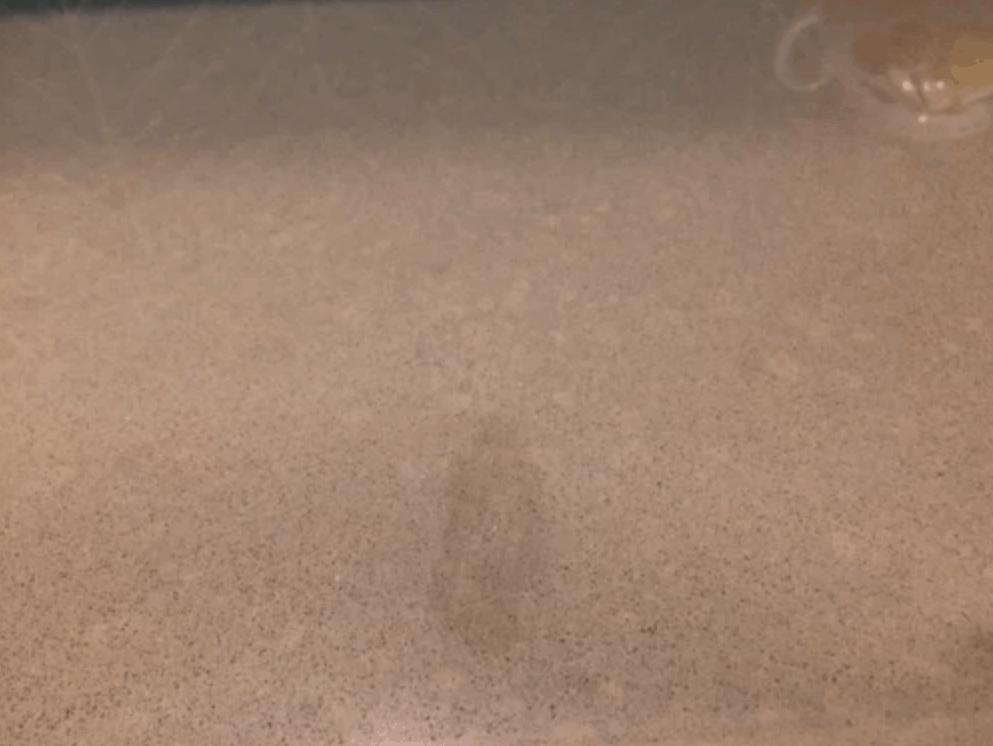 Can Quartz Countertops Stain